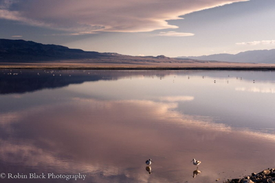 Owens Lake, Photo by Robin Black