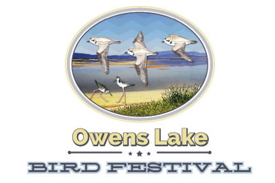 Owens Lake Bird Festival
